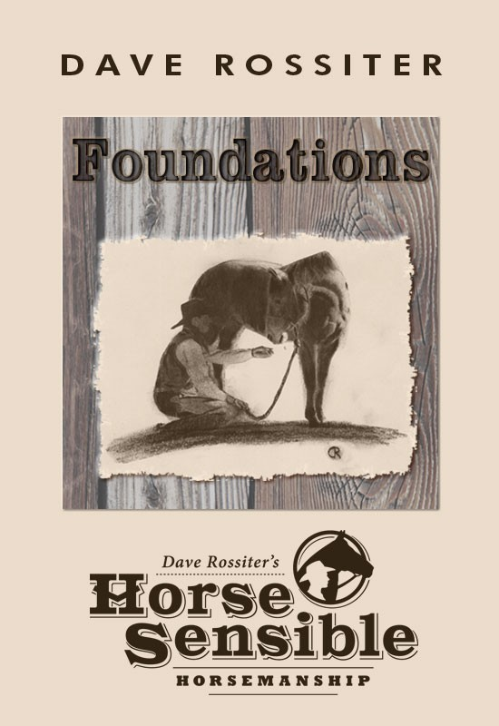 Foundations: Horse Sensible Horsemanship by Dave Rossiter
