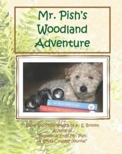 Mr. Pish's Woodland Adventure