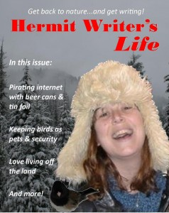 hermit writers life 2