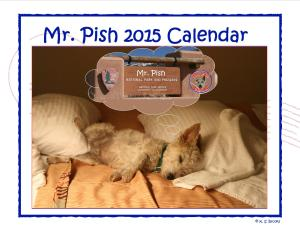 Mr. Pish 2015 hanging calendar