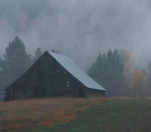 Foggy Barn-Colville Valley