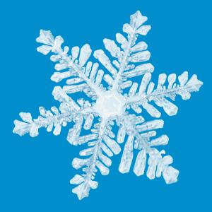 snowflake holiday shopping time
