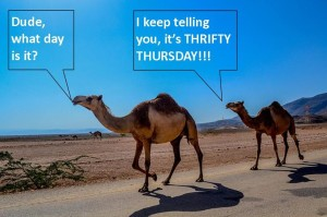 thrifty thursday ebook deals talking camels