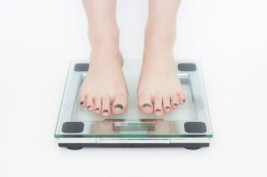 authors get fat diet-398613_960_720