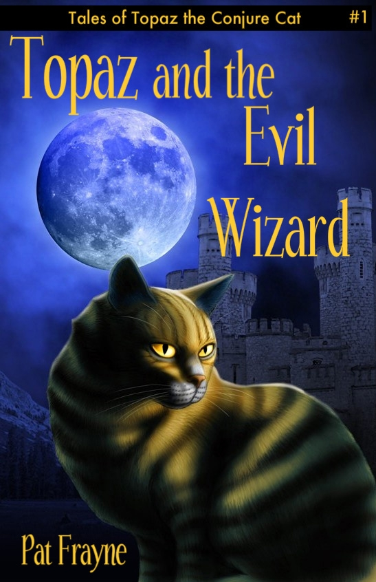 Sneak Peek:  Topaz and the Evil Wizard by Pat Frayne