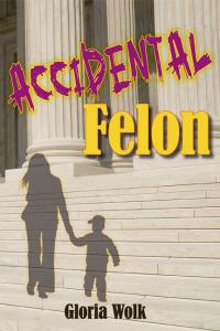 Accidental Felon