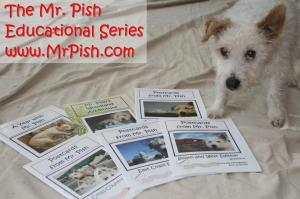 The Mr. Pish Educational Series