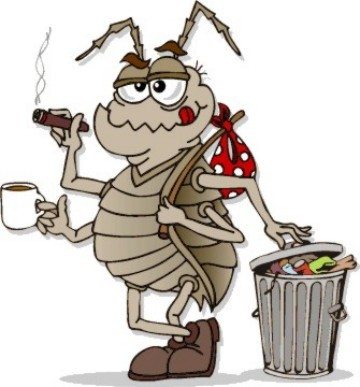 Image result for cockroaches cartoon
