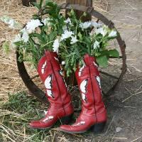 cowboy boots - by KS Brooks