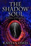 The Shadow Soul 120x177