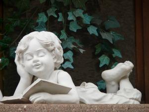 book karma reading cherub