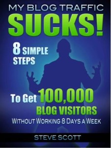 BLOG TRAFFIC SUCKS