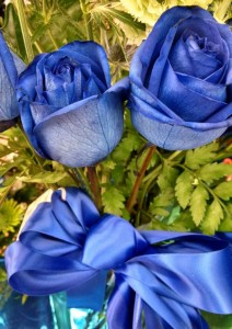 flash fiction writing prompt Blue Roses and Bow IMG_20150131_CROP