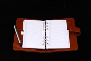 IU notebook for author planning