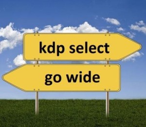 kdp select or go wide signs-1172209_960_720