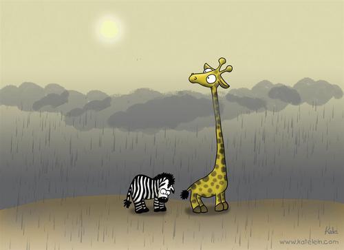 Giraffe Zebra
