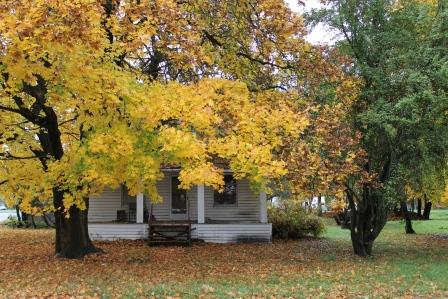 fall foliage writing prompt 234-downtown-chewelah-home-com