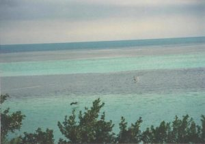 florida-keys-stripes-1998-flash-fiction-prompt-copyright-ksbrooks