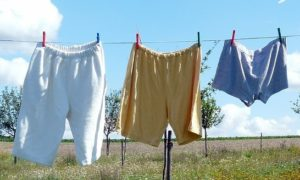 underwear and writing - underwear hanging on a line