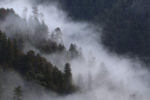 oak creek canyon overlook flash fiction writing prompt copyright KSBrooks