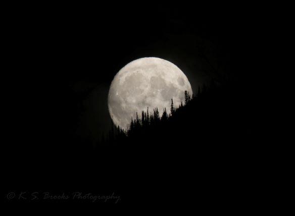 full moon rising 3L0A2469 flash fiction writing prompt copyright KS Brooks